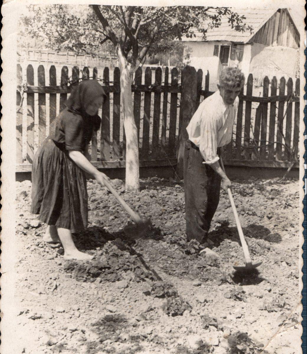 Családi krónikák a régi fényképekkel