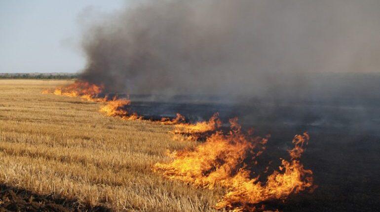 Az avarégetésért, helyszíntől függően, a törvény 6-12 ezer hrivnya közötti bírságot ír elő.