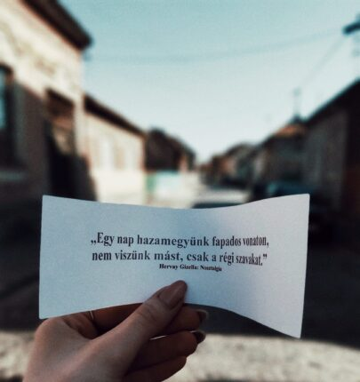 A lányok több mint száz magyar versből válogattak ki hosszabb-rövidebb idézeteket, amelyeket a város forgalmas közterein helyeztek el
